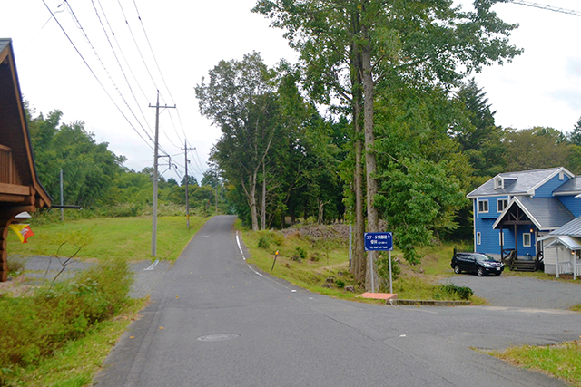 道の左に見えるログハウスがピーターパン、受付は右です。