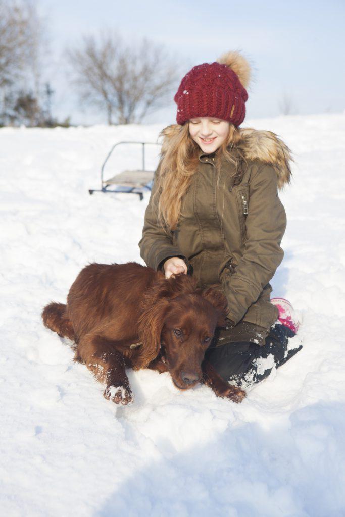 蒜山愛犬と雪遊び