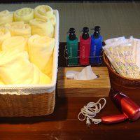 Bath towel, face towel, toothbrush, shampoo, conditioner, hair dryer.