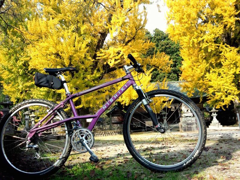 蒜山秋サイクリング