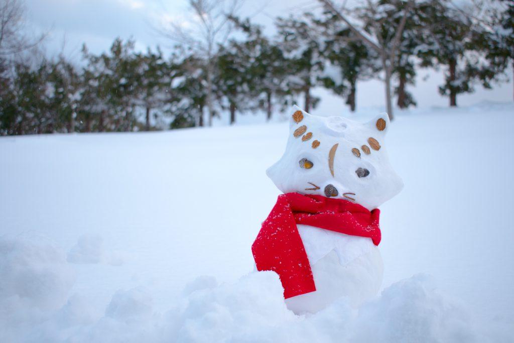 雪だるまにコスプレ