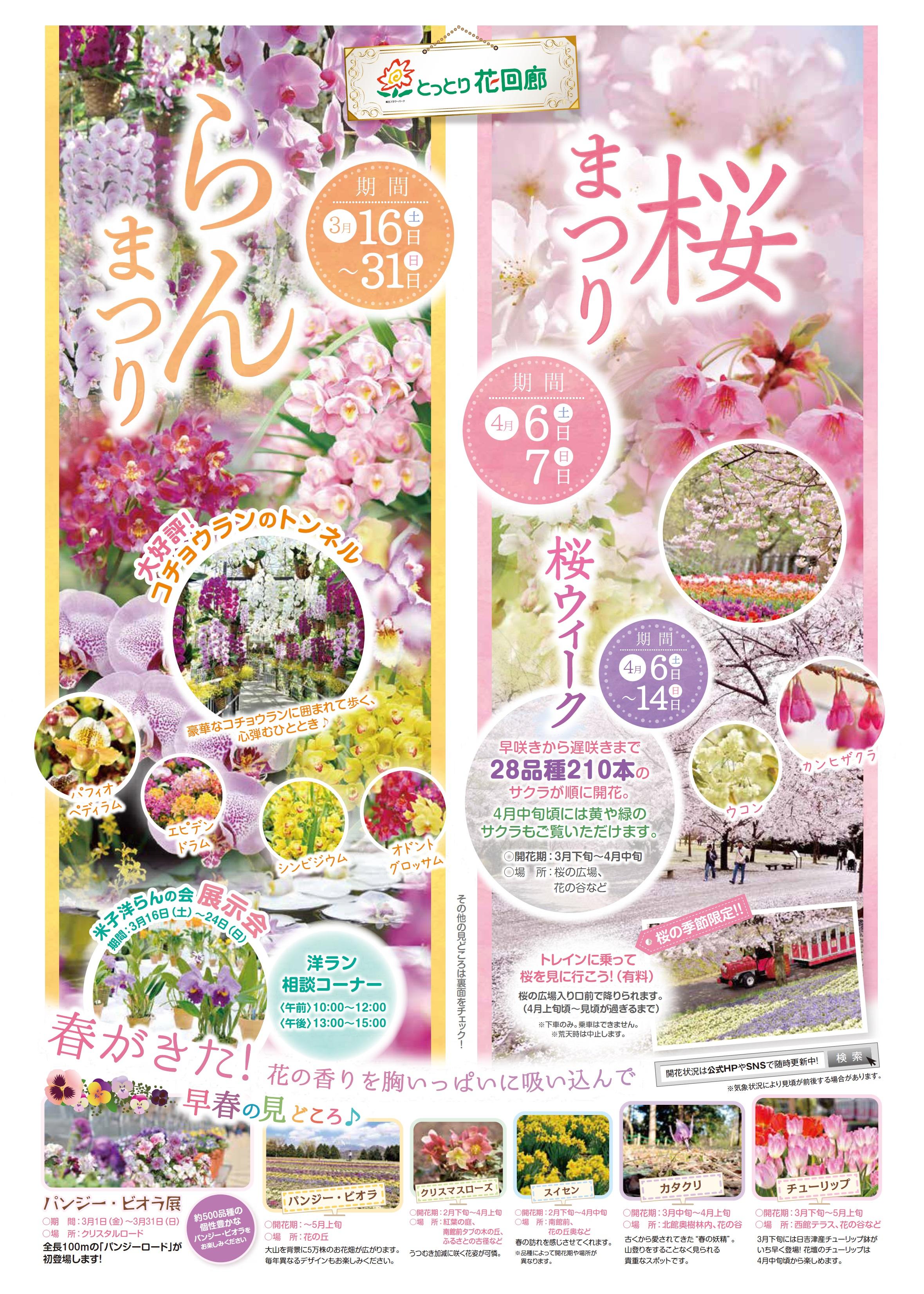 とっとり花回廊桜まつり