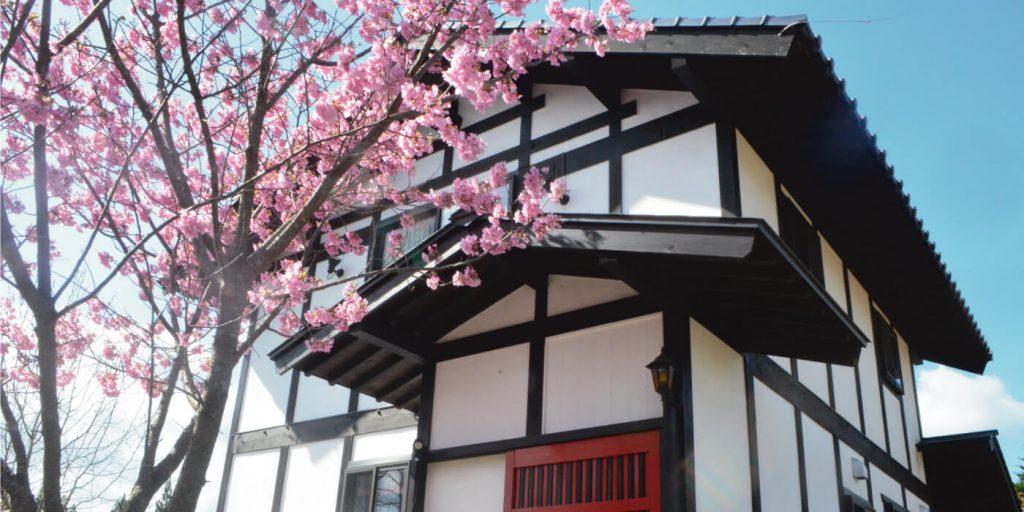桜とむらさきスライド用