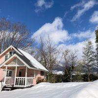 スライド用ローズ冬雪景色